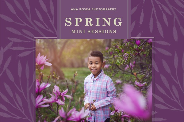 Spring 2019 Mini Sessions Offer - thumbnail