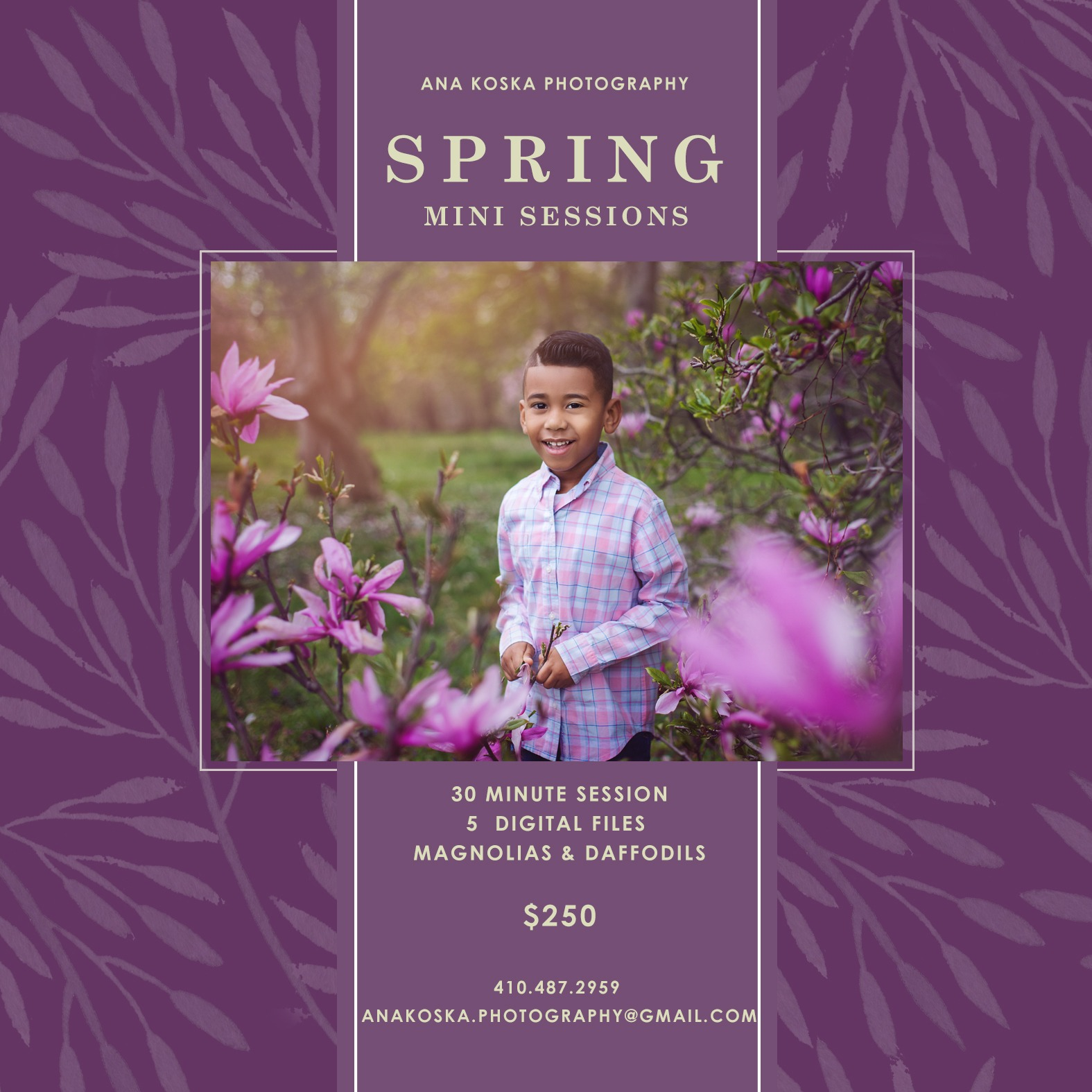 Spring 2019 Mini Sessions Offer