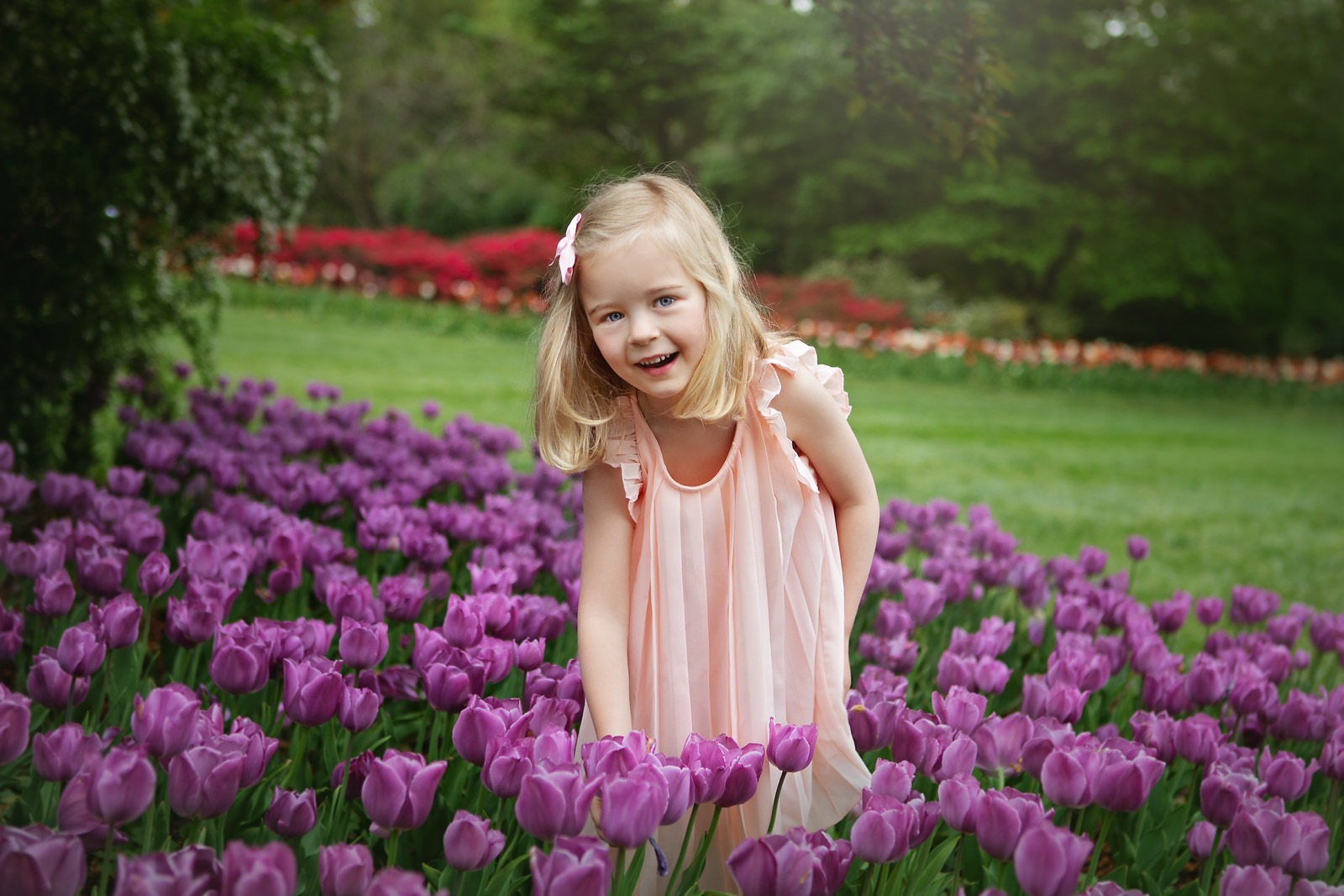Girl with Purple Tulips in Sherwood Gardens