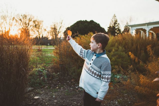 Boy holding a leaf in sunset