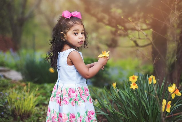 Professional picture of a two year old girl and yellow flowers