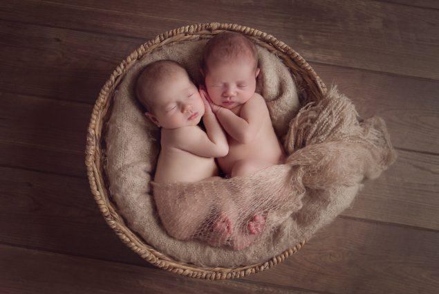 Twin newborns in wicker basket